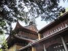 Крыша храма.