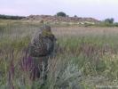 Жители Каменной Могилы
