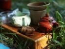 Летние чаепития на природе