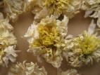 Цзюй Хуа – Хризантема чайная (фото 3)
