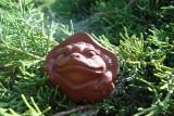 Жаба в листе лотоса (фото 1)