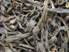 Е Шен Шэн Пуэр – Сырой пуэр из дикорастущих чайных деревьев (фото 1)
