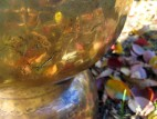 Поющая чаша (фото 3)