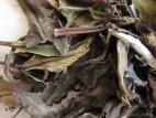 Бай Му Дань Хун Ча Вэй – Белый Пион с ароматом красного чая (фото 5)