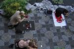 Воскресный практикум: чайная церемония У Во – Без «я» (фото 1)