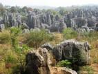 Каменный лес в Юннани