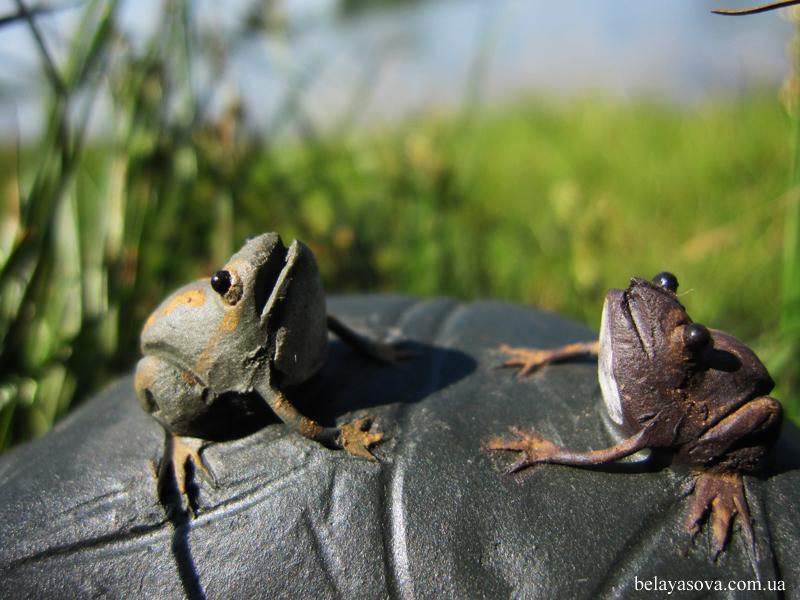 Лягушки на листьях (фото 1)