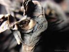 Те Лохань - Железный Архат (фото 2)