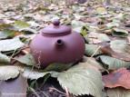 Чайник У Я Пин (фото 5)